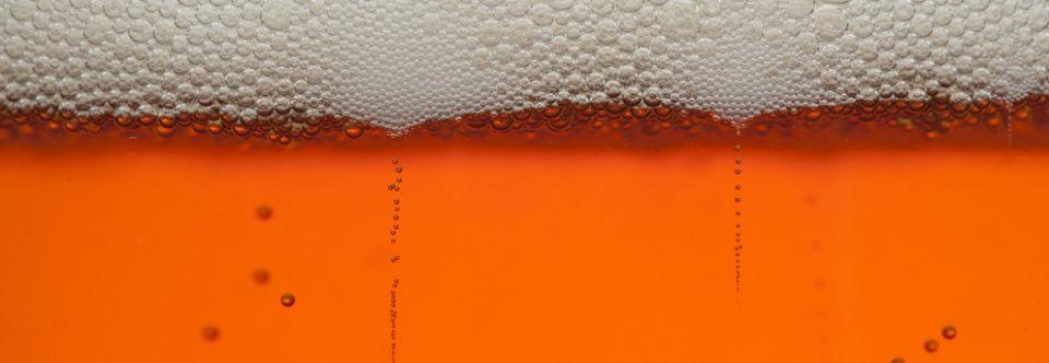The origin of beer